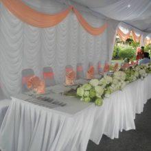 Canopy Backdrop-2