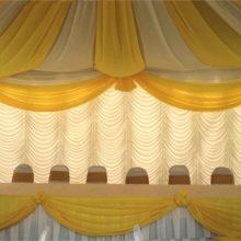 Canopy Backdrop-3