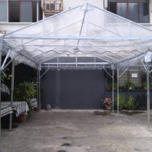 ashape-transparent-canopy 6