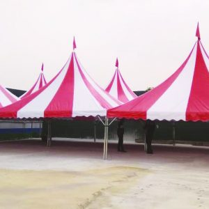 Arabian Canopy with stripe Color Canvas - Red White